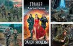 Дмитрий Силлов: книги по порядку «Сталкер» и серия «Снайпер»