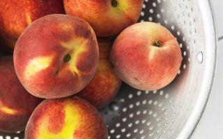 3 важных правила здорового питания