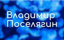 Владимир Поселягин: все книги автора (циклы, серии)
