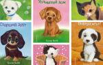 Лучшие книги про котят и щенят от Холли Вебб