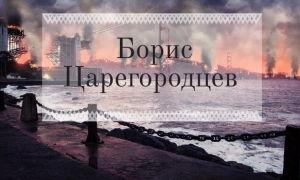 Все книги Бориса Царегородцева: список