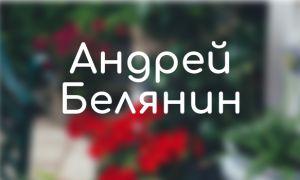 Андрей Белянин: книги по сериям (список)