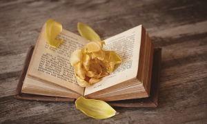 Книги про вампиров и любовь