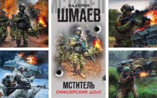 Валерий Шмаев: все книги «Мститель»