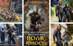 Александр Авраменко: книги по сериям «Волк» и др. романы