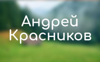 Все книги Андрея Красникова